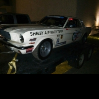 65 Shelby #398